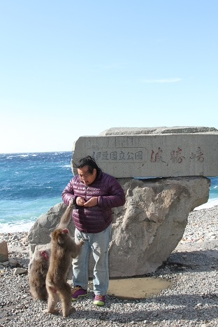 ロケで静岡県南伊豆の波勝崎岬に行ってきました。イメージ1