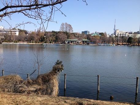 朝から東京へお仕事です。イメージ2