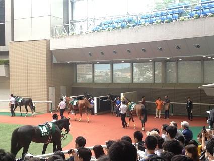 福島競馬場へ行って参りました。イメージ5