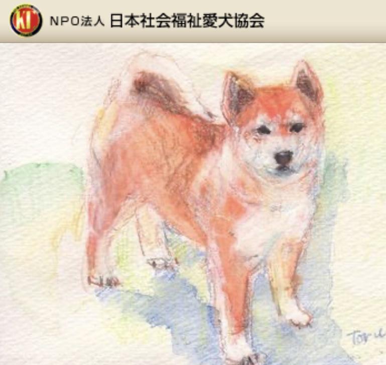特定非営利活動法人日本社会福祉愛犬協会 /KCジャパン