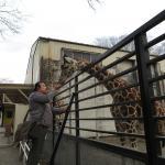 宇都宮動物園イメージ2