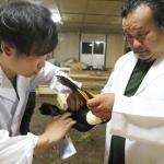 日本ペット診療所を開院しました。イメージ