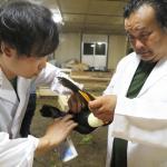 日本ペット診療所イメージ1