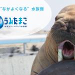 「大分マリーンパレス水族館『うみたまご』」追加しました!